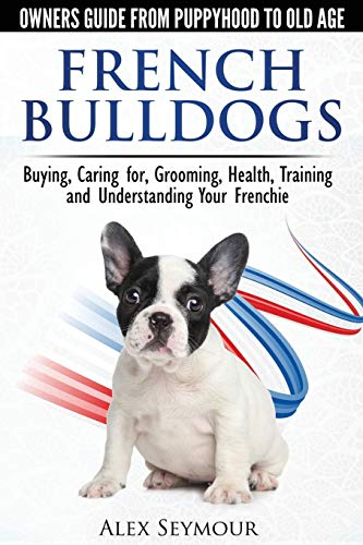 french bulldog guide - 1