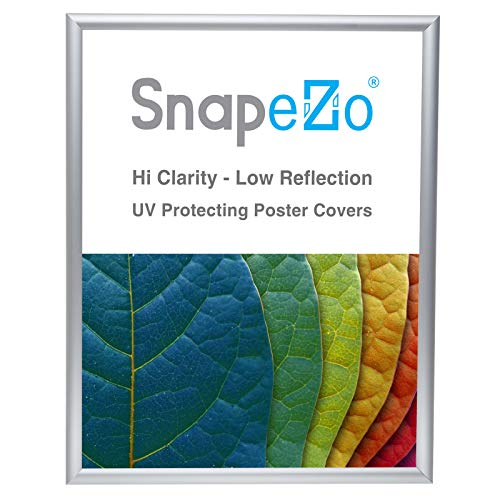 SnapeZo Poster Frame 18x24 Inches, Silver 1 Inch Aluminum Profile, Front-Loading Snap Frame, Wall Mounting, Sleek Series (18 X 24 Silver Frame)