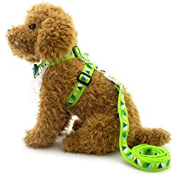 SMALLLEE_LUCKY_STORE Pet Floral Lace Trim Nylon Collar Harness Leash Set for Mall Dog Cat, Green, Small
