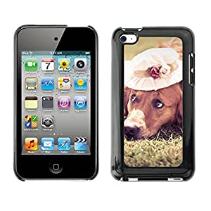 Hot Style Cell Phone PC Hard Case Cover // M00100454 animals dog hat // Apple ipod Touch 4 4G 4th