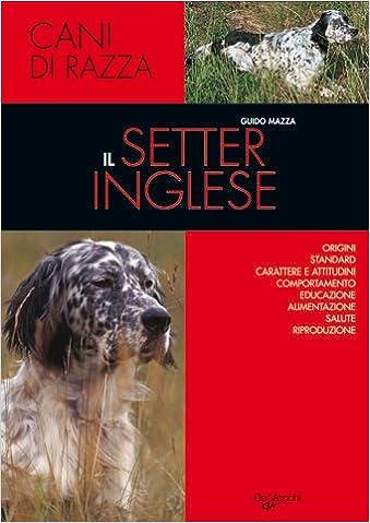 Amazonit Il Setter Inglese Guido Mazza Libri