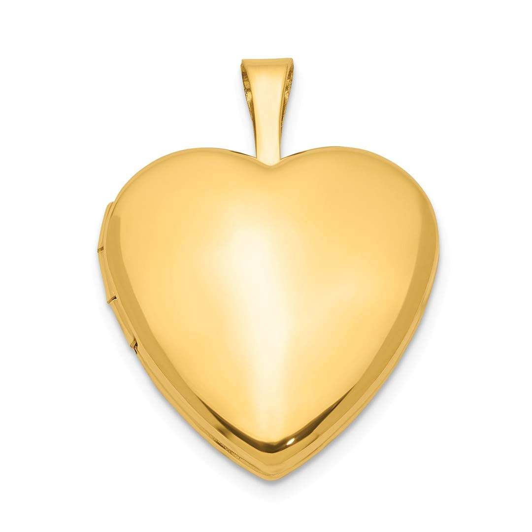 ICE CARATS 1/20 Gold Filled 2 Frame 15mm Heart Photo Pendant Charm Locket Chain Necklace That Holds Pictures Fashion Jewelry Ideal Gifts For Women Gift Set From Heart IceCarats 7543522857029013061