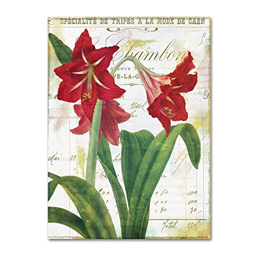 - Peppermint Amaryllis by Color Bakery, 24x32-Inch Canvas Wall Art