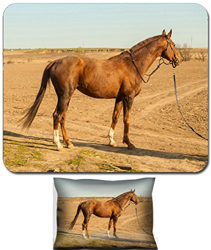 Liili Mouse Wrist Rest and Small Mousepad Set, 2pc Wrist Support Horse in countryside 27981932