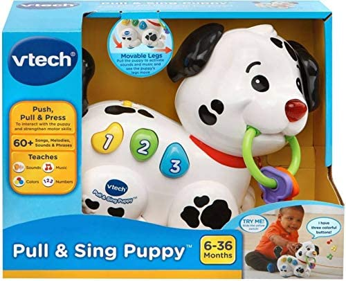 VTech 502803 Pull Along Puppy Pal Toy