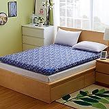 FDCVS Thickened Tatami mattresses Foldable Bed pad-B 120x200cm(47x79inch)