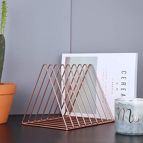 LISAY Desk Organizer,Magazine Holder,Desk Organizers and Accessories,Desk Decor,Ins Nordic Style Iron Art Metal Bookends Magazine Organizer File Tray Stationery Holder Document Rack (Color : A)