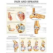 Pain and sprains e-chart: Quick reference guide