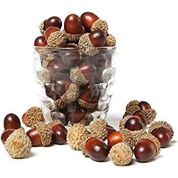MyGift 100 Pieces Brown Assorted Artificial Acorn Caps, Autumn Vase Filler Decorations