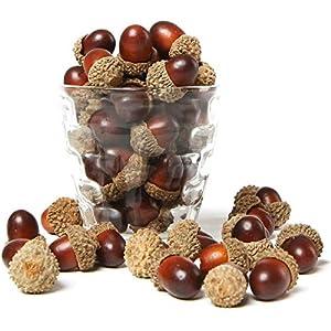 MyGift 100 Pieces Brown Assorted Artificial Acorn Caps, Autumn Vase Filler Decorations 63