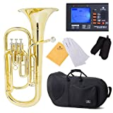 Cecilio 2Series BR-280 Brass Bb Baritone with Stainless Steel Valves, Yellow