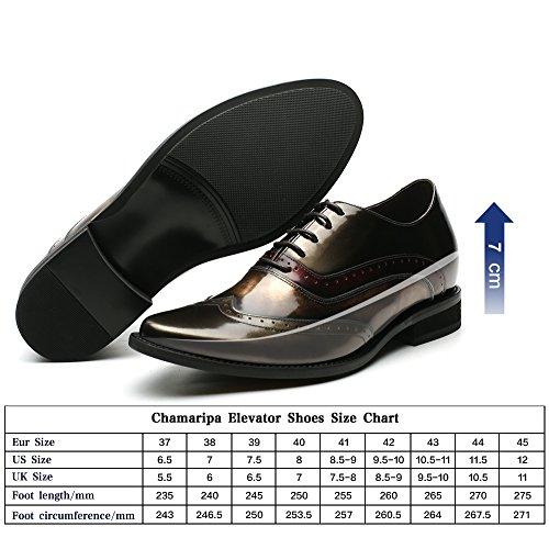 CHAMARIPA Scarpe con Rialzo Eleganti Oxford Uomo di Pelle per Tempo Blu/Oro Commerciali Fino a 7 cm - H81D38D061D oro