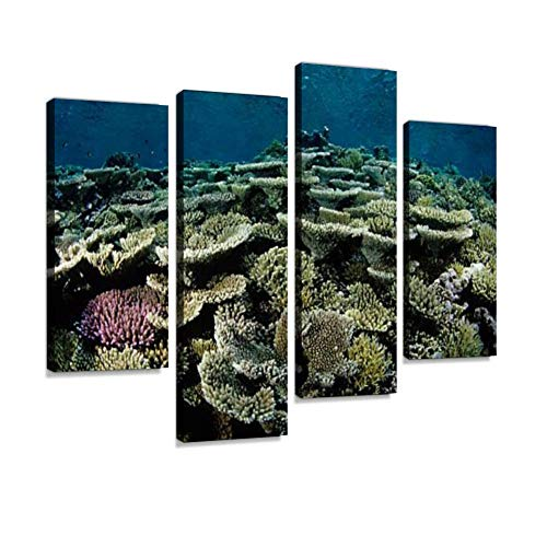 Canvas Wall Art Painting Pictures Beautiful Coloured Hard Coral Reef Modern Artwork Framed Posters for Living Room Ready to Hang Home Decor 4PANEL