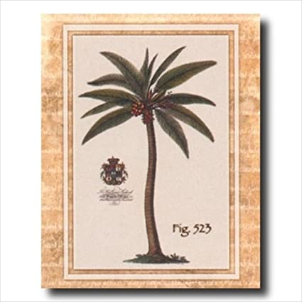 Amazon Tropical Palm Tree Room Landscape Wall Picture 16x20 Art