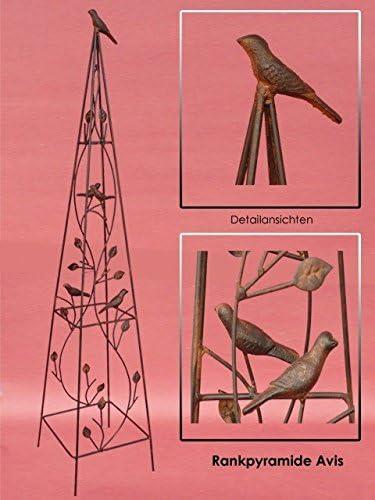 Rank Pyramide Avis H: 105 cm pérgola enrejado Flores Jardín Pirámide decorativa NUEVO: Amazon.es: Jardín