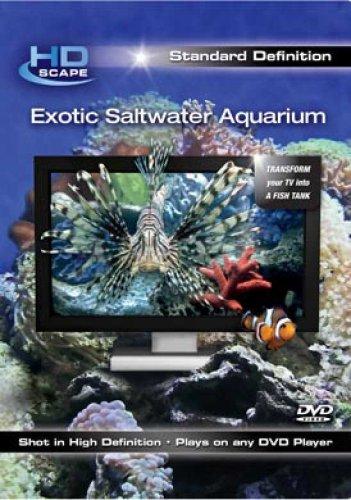 Exotic Saltwater Aquarium Sd