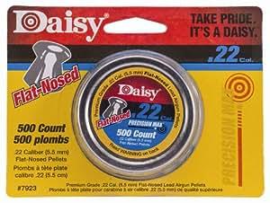 Daisy Outdoor Products .22 Caliber Flat Airgun Pellet