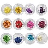MagiDeal 12 Couleurs 3D Fleur Sèche Nail Art Décoration UV Gel Acrylique Manucure
