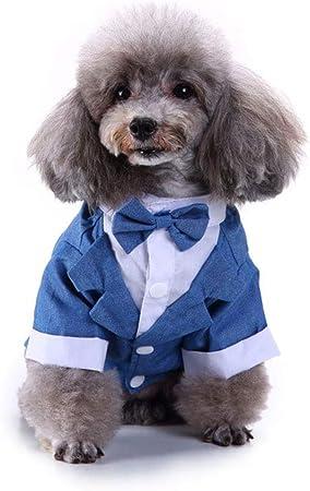 Camisa para Perros Cachorro Mascota Ropa para Perros Pequeños,Traje para Mascotas Traje De Corbata De Lazo,Camisa De Boda Esmoquin Formal con Corbata,Corbata De Boda para Príncipe Perro,Azul,XL: Amazon.es: Hogar
