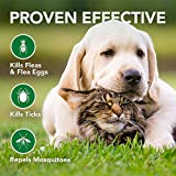 Vet's Best Flea and Tick Wipes for Dogs and Cats