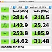 Amazon.com: Dogfish Msata - Disco duro interno de estado ...