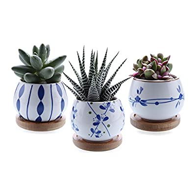 T4U Ceramic Succulent Planter Pot with Bamboo Tray, Small Cactus Plant Pot Container Window Box Home and Office Decoration Desktop Windowsill Ornament Gift for Gardener Wedding Birthday Christmas