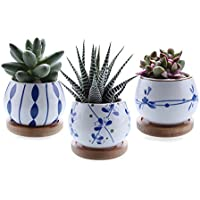T4U 2.7 Inch Ceramic Succulent Plant Pot w/Bamboo Tray Set of 3