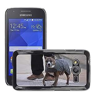 Etui Housse Coque de Protection Cover Rigide pour // M00113416 Perro Chaqueta Mascotas Canine Wearing // Samsung Galaxy Ace4 / Galaxy Ace 4 LTE / SM-G313F