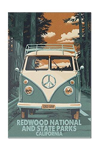 Redwoods National and State Parks - Camper Van Letterpress