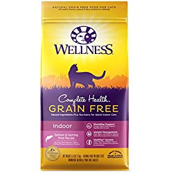 Wellness Natural Pet Food Complete Health Grain Free Dry Indoor Salmon & Herring Cat Food, 5.5 lb