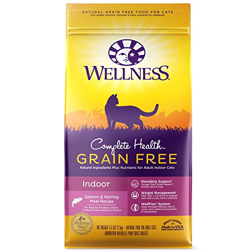 Wellness Complete Health Natural Grain Free Dry Cat Food, Indoor Health Salmon & Herring Meal Recipe, 5.5-Pound (Wellness Adult Salmon)