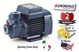 Pedrollo 41PNK60U1CA5P Model PKm 60 115V 60Hz Single-phase Water Pump with Peripheral Impeller, Flow rate up to 40 l/min (2.4 m³/h), Head up to 40 m, 0.37kW and 0.50 Power (P2)