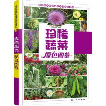 Download Rare vegetable colors illustrations(Chinese Edition) pdf