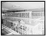 Vintography 24 x 30 Giclee Unframed Photo Whale Skeleton Bird exhibits East India Marine Hall Peabody Museum Salem Salem Mass 1910 Detriot Publishing co. 93a