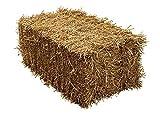 Barley Straw Full Bale - 100x50x40cm - Feed Quality