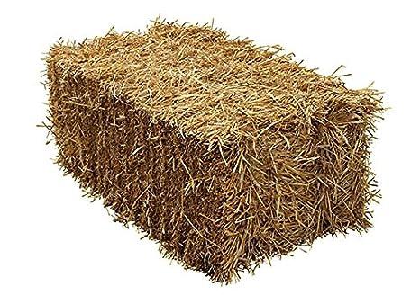 Bala de paja - Cebada de calidad alimentaria, aprox. 18 kg: Amazon.es: Productos para mascotas