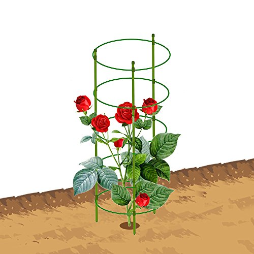 Mr.Garden Mini Trellis 10.6'' Dia x 11.4'' Dia x 12.2'' Dia x 13'' Dia x 13.7'' Dia x 59'' H,4 Rings,Garden Trellis Plant Support 3 Sets Green by Mr Garden