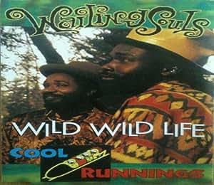 Wild wild life [Single-CD]