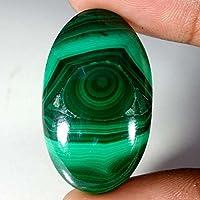 66.20CTS verde Malachite cabochon sciolto gemma Beautiful Stones