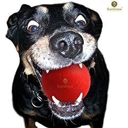 "SunGrow Ultra Bouncy Ball for Pets: Extremely Bite Resistant & Highly Durable: 3.5"" Red Non-Toxic Rubber Ball for Dogs & Cats : Lasts 3 months & more, even with Chewers : Great for Teething Stage"