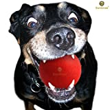 """SunGrow Ultra Bouncy Ball for Pets: Extremely Bite Resistant & Highly Durable: 3.5"""" Red Non-Toxic Rubber Ball for Dogs & Cats : Lasts 3 months & more - even with Chewers : Great for Teething Stage"""