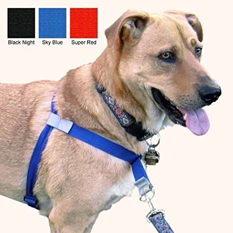 Amazon.com : Walk Your Dog With , No-Pull Front-Attachment ...
