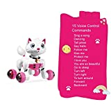 Hi-Tech Wireless Interactive Robot Cat Cute Pink Kitty with Voice Recognition Control and Gesture Sensing Best Gift Idea for Children's Day, Daughter's Birthday, Christmas