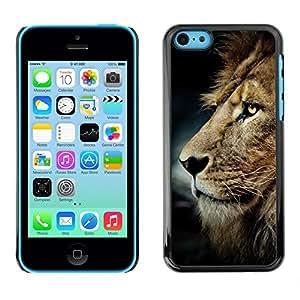 Sucias León pelo melena de oro de Brown- Metal de aluminio y de plástico duro Caja del teléfono - Negro - iPhone 5C