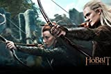 Twenty-three The Hobbit 2 Movie Poster Fabric Silk Wall Home Decorative Painting -Orlando Bloom & Nicole Lilly canvas poster 24X36Inch