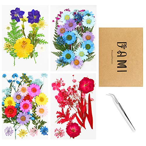 Real Dried Pressed Flowers and Leaves - 73pcs Mixed Multiple Dry Flower and Leaf with Tweezer for DIY Candel Resin Jewelry Nail Pendant Crafts Art Floral Decoration.