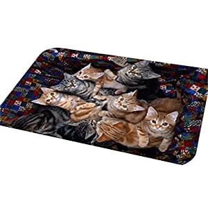 Shuohu Lovely Cat Kitty Door Mat Bathroom Indoor/Outdoor Non Slip Washable Kitchen Area Rug