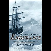 Endurance (English Edition)