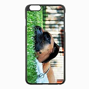 iPhone 6 Plus Black Hardshell Case 5.5inch - boxing shepherd grass rest Desin Images Protector Back Cover
