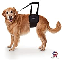 GingerLead Dog Support and Rehabilitation Harness, Large Female Sling